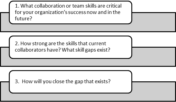 Three Critical Questions: Build Effective Collaboration-Assess Your Team Building Needs